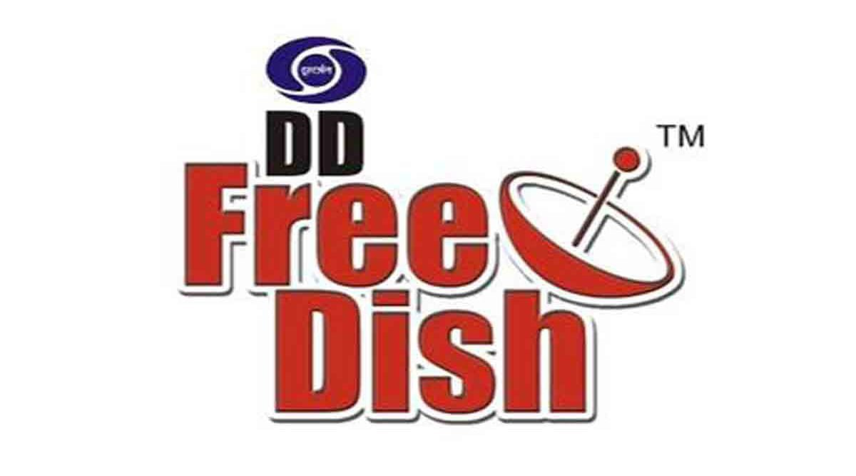 DD Free Dish AMP Logo